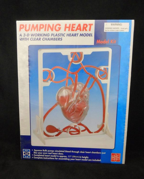 Heart Pumping Model Kit