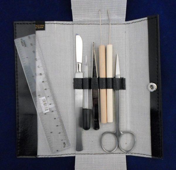 Dissecting Kit Economy