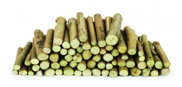 Wood Branch Stumps