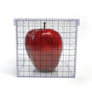 3d Grid Box