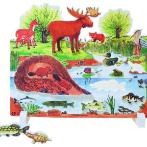 Book Plus Foam Model: Pond Habitat