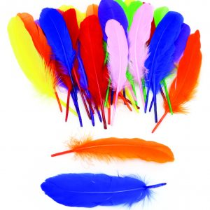 Giant Colorful Feathers